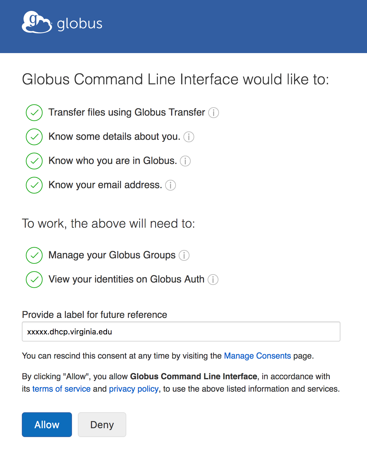 Globus CLI authentication